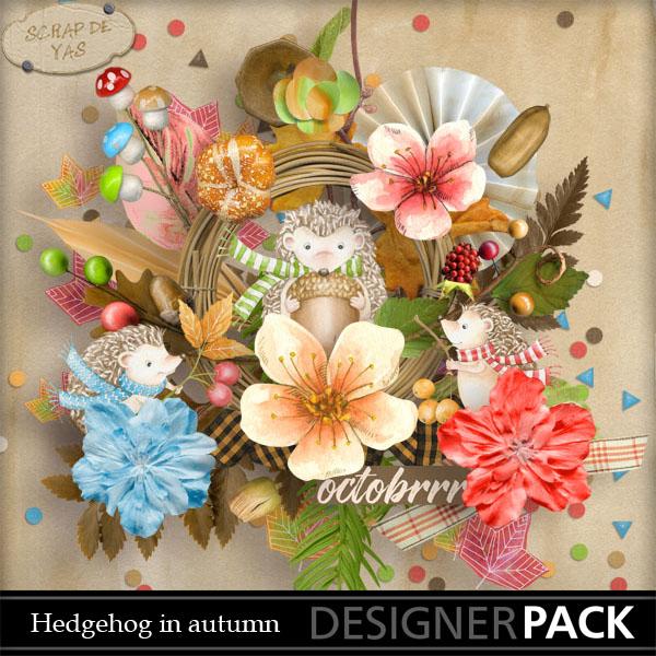 Hedgehog in Autumn pv